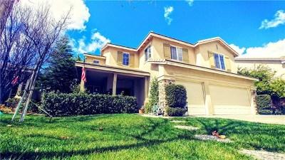 Wildomar Single Family Home For Sale: 35959 Covington Drive
