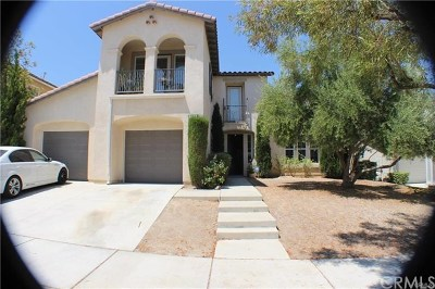 Corona Single Family Home For Sale: 25279 Coral Canyon Road