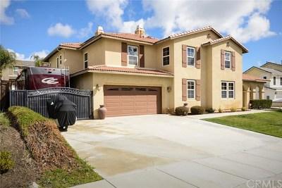 Menifee Single Family Home For Sale: 30176 Royal Hunt Street
