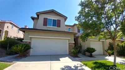 Lake Elsinore Single Family Home For Sale: 8 Plaza Avila