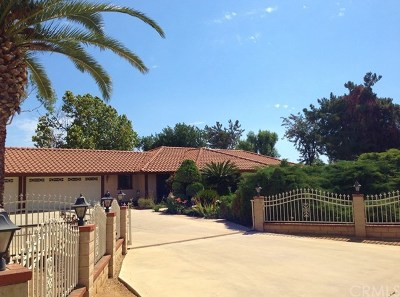 Perris Single Family Home For Sale: 18570 Priceless Road