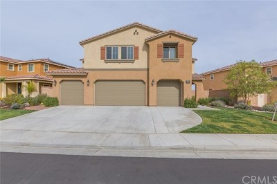 Lake Elsinore Single Family Home For Sale: 36536 Obaria Way