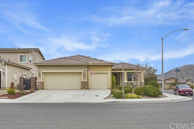 Lake Elsinore Single Family Home For Sale: 29320 Dugout Drive