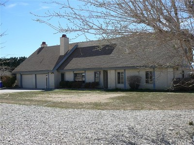 Apple Valley Single Family Home For Sale: 13420 Rincon Road