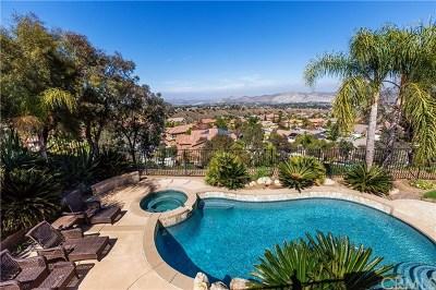 Corona Single Family Home For Sale: 1533 Vandagriff Way