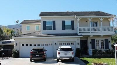 Corona Single Family Home For Sale: 1628 Camino Largo Street