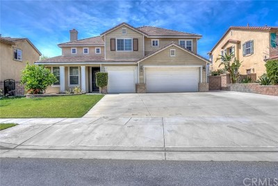 Chino Single Family Home For Sale: 13566 Oxford Court