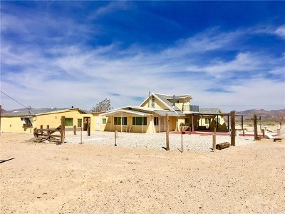 Lucerne Valley Single Family Home For Sale: 34450 Northside Road