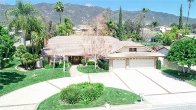 Rancho Cucamonga Single Family Home For Sale: 9640 Whirlaway Street