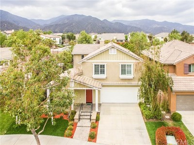 Corona Single Family Home For Sale: 25351 Forest Street
