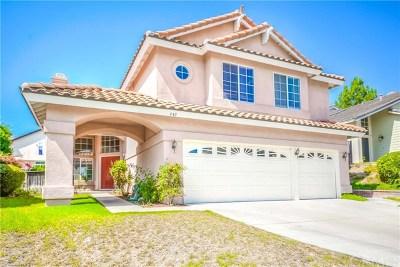 Corona Single Family Home For Sale: 440 Somerset Circle