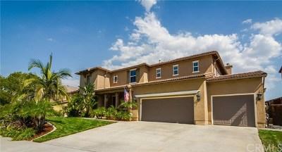Corona Single Family Home For Sale: 8637 Camino Limon Road