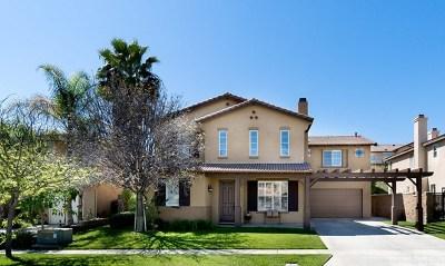 Corona Single Family Home For Sale: 972 McCall Drive