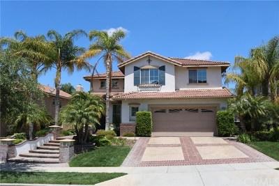 Corona Single Family Home For Sale: 4415 Leonard Way