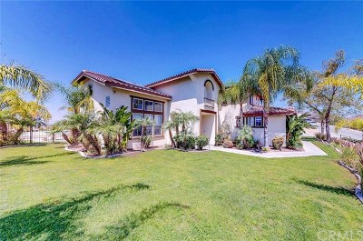 Norco Single Family Home For Sale: 1346 Stirrup Way