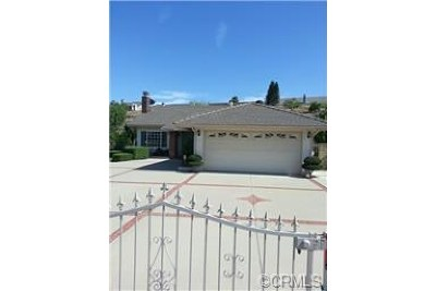 Chino Hills Single Family Home For Sale: 3657 Whirlaway Lane