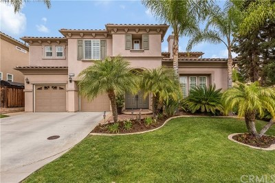 Corona Single Family Home For Sale: 23331 Camino Terraza Road