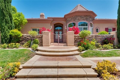Corona Single Family Home For Sale: 1655 Zurita Circle