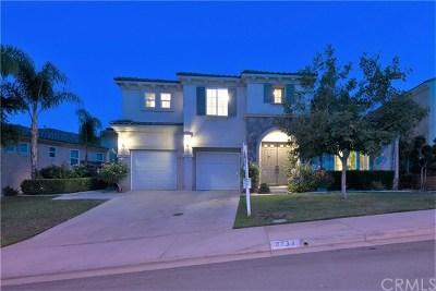 Corona Single Family Home For Sale: 8733 Calle Canon Road