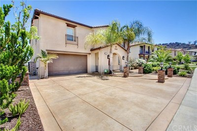 Corona Single Family Home For Sale: 3509 Elker Road