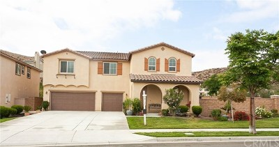 Lake Elsinore Single Family Home For Sale: 35611 Desert Rose Way