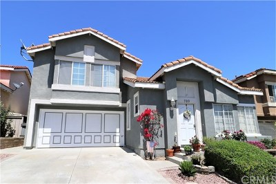 Corona Single Family Home For Sale: 789 Playa Blanca Circle