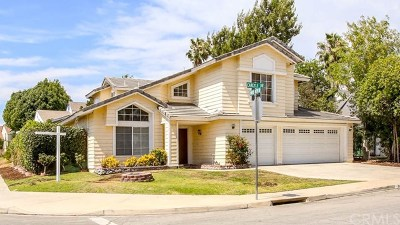 Riverside Single Family Home For Sale: 8079 Carlyle Drive