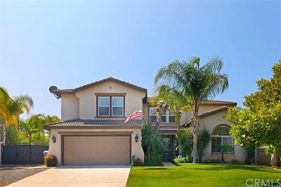 Norco Single Family Home For Sale: 448 Carson Lane