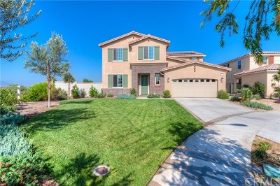Eastvale Single Family Home For Sale: 7699 Las Brisas Court