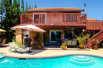 San Bernardino Single Family Home For Sale: 3824 Leroy Court