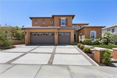 Corona Single Family Home For Sale: 7599 Lady Banks