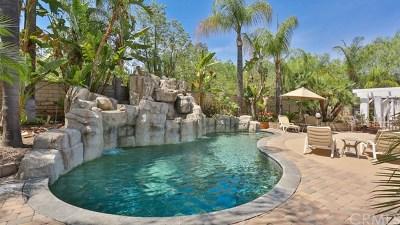 Corona CA Single Family Home For Sale: $1,179,000