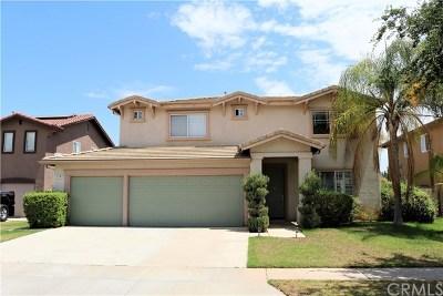 Corona Single Family Home For Sale: 1387 Pinewood Drive