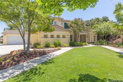 Riverside, Temecula Single Family Home For Sale: 18660 Sunset Knoll Drive