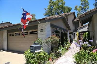 Anaheim Hills Single Family Home For Sale: 6591 E Via Fresco