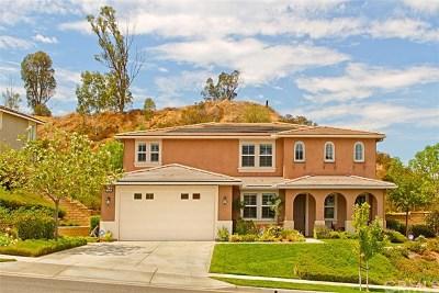 Corona Single Family Home For Sale: 1419 Folson Circle