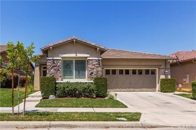 Corona Single Family Home For Sale: 9172 Pinyon Point Court