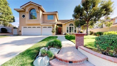 Chino Hills Single Family Home For Sale: 15885 Fetlock Lane