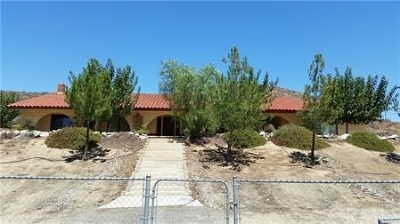 Lake Elsinore Single Family Home For Sale: 28067 Hwy 74