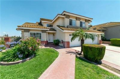 Corona Single Family Home For Sale: 971 Homestead Road