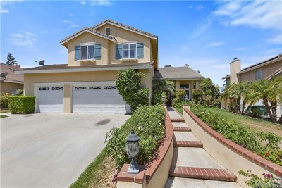 Corona Single Family Home For Sale: 2986 S Buena Vista Avenue