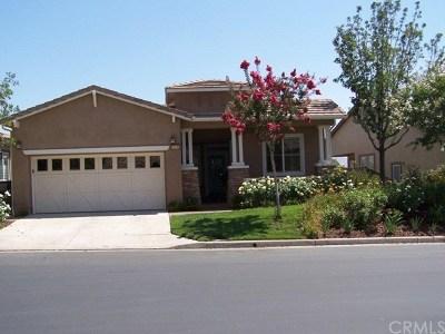 Corona Single Family Home For Sale: 24080 Steelhead Drive