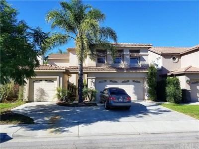 Lake Elsinore Single Family Home For Sale: 6 Villa Valtelena