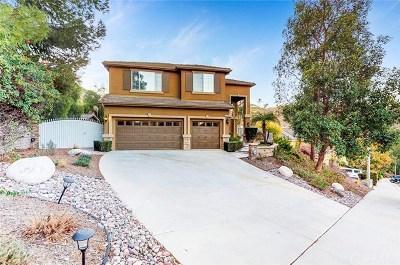 Riverside Single Family Home For Sale: 16205 Sun Summit Drive