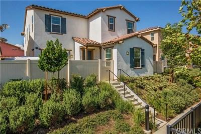 Riverside Single Family Home For Sale: 11020 Via Del Corso
