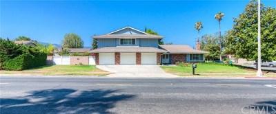 Corona Single Family Home For Sale: 1654 Kellogg Avenue