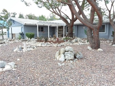 Norco Single Family Home For Sale: 620 Winchester Drive