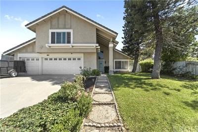 Corona Single Family Home For Sale: 909 Nottingham Drive