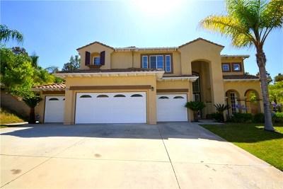 Corona Single Family Home For Sale: 4428 Signature Drive