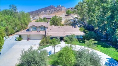 Perris Single Family Home For Sale: 23210 Piedras Road